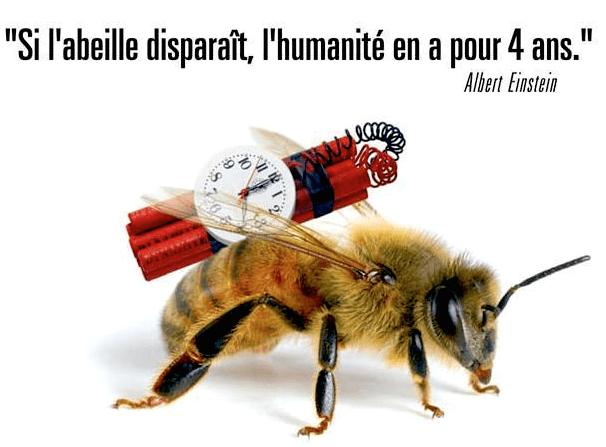 Quand il n'y aura plus d'abeilles…