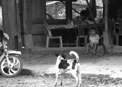 Le gamin et le chien